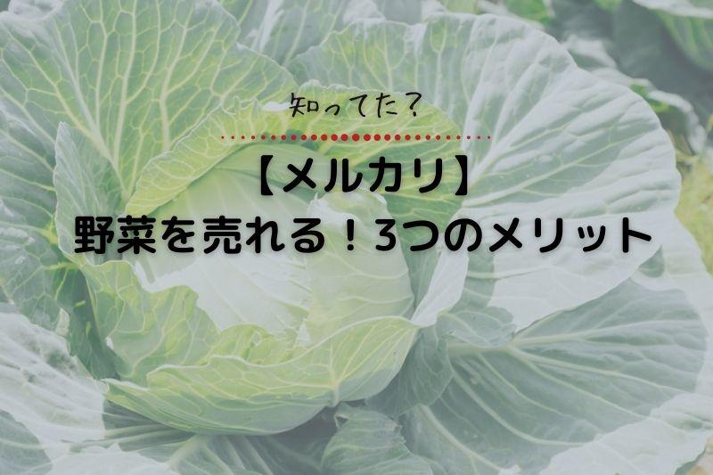 知ってた?【メルカリ】野菜を売れる!3つのメリット